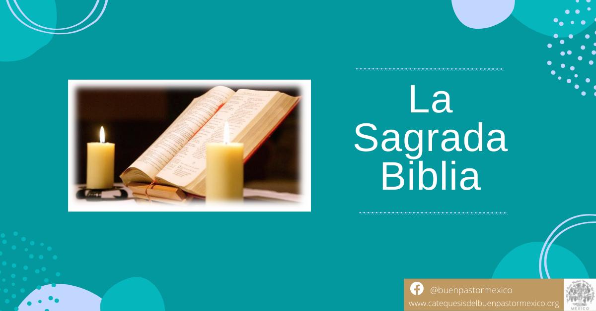 Protegido: 41. La Sagrada Biblia