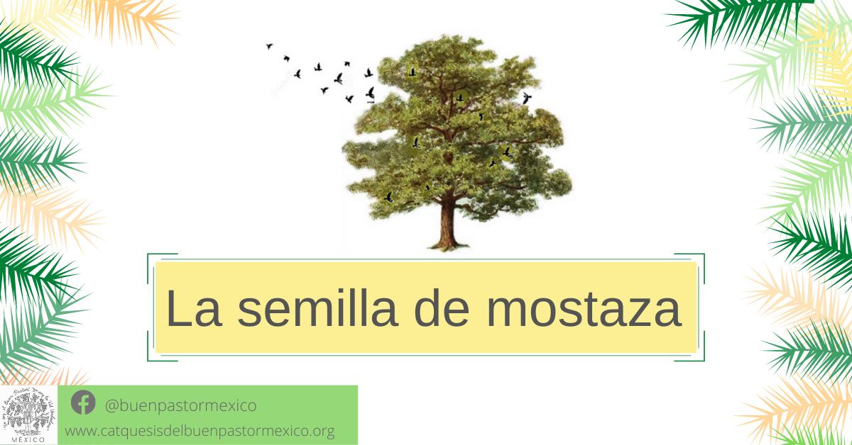 Protegido: 15. La semilla de mostaza